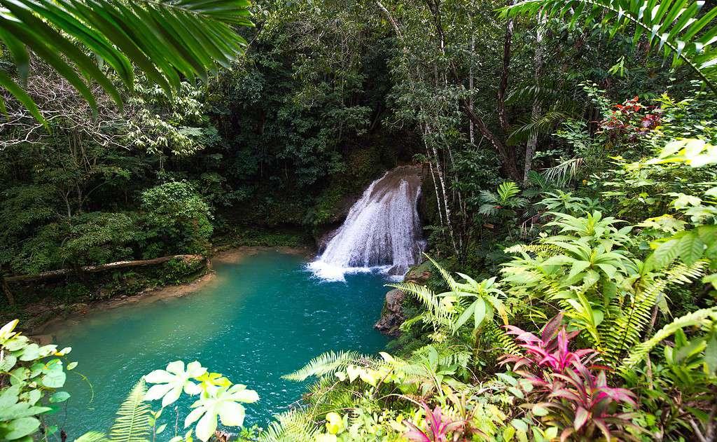 Waterfall Jamaica