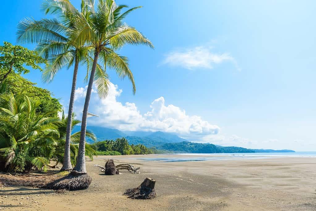 Beach in Uvita